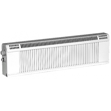 Radiator REGULUS RD2/100